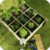 Urban garden and sowing. icon