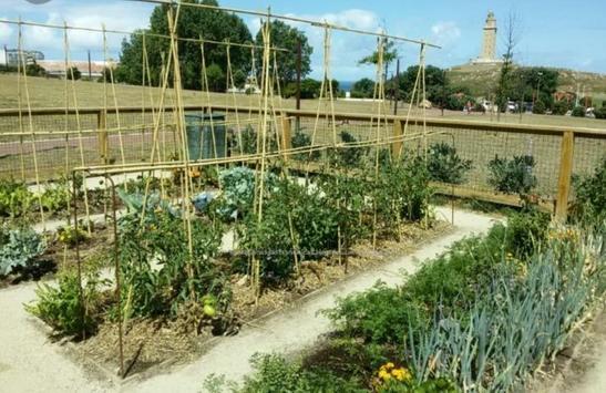 Urban garden and sowing. screenshot 5