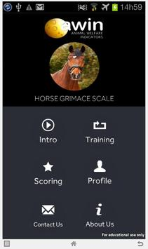 Horse Grimace Scale poster