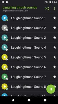 Appp.io - Laughing thrush sounds poster