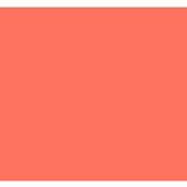 펫나우 icon