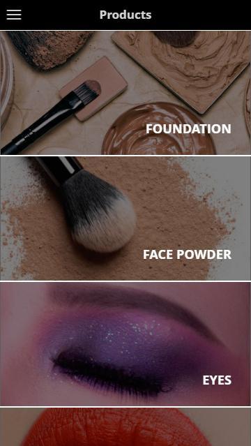 Download LT PRO Professional Make Up mini apk