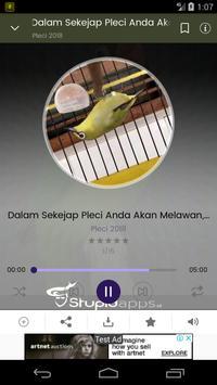 Masteran Pleci 2019 screenshot 5