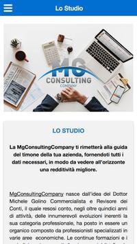MG Consultingcompany screenshot 2
