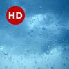 Icona Rainy Day