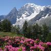 ikon Bersantai gunung - suara alam