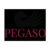 Università Telematica Pegaso icon