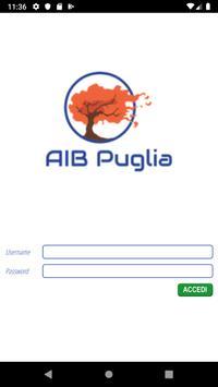 AIB screenshot 1