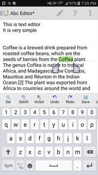 My Text Editor screenshot 2