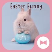 Симпатичные обои Easter Bunny иконка