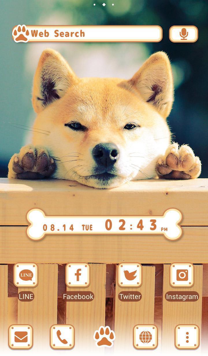 Android 用の 可愛い 壁紙アイコン 柴犬の視線 無料 Apk をダウンロード