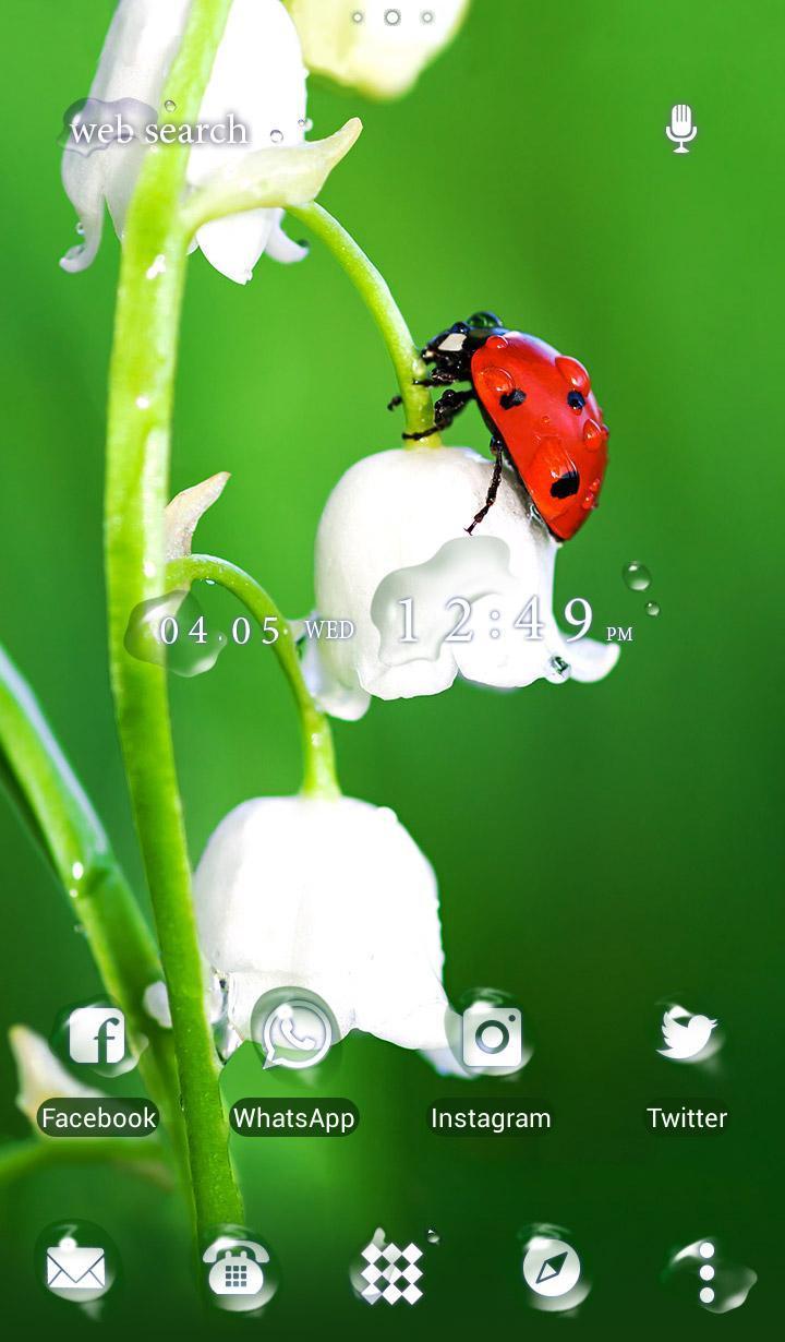 Android 用の 幸せを呼ぶ壁紙アイコン てんとう虫と鈴蘭 無料 Apk をダウンロード