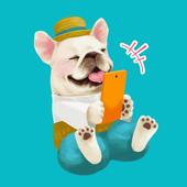 めちゃコミック-毎日連載マンガアプリ 【人気漫画読み放題の漫画アプリ!無料まんが・人気マンガ多数】 icon