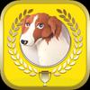 ターゲットの友1000 英熟語アプリ icon