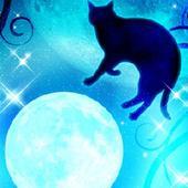 Moon&Blackcat Kirakira(FREE) 图标