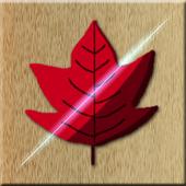 MapleHunt icon