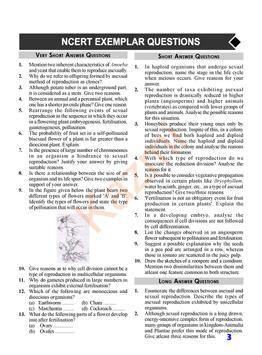 Class 12 Biology Exemplar Solutions screenshot 3