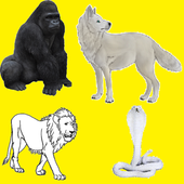 CollectiveNamesOfAnimals icon