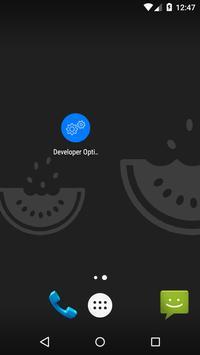 開発者向けオプションのショートカットとデバイス情報 ポスター