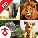 150 Animal Sounds APK Android