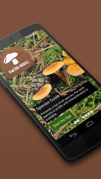iKnow Mushrooms 2 LITE poster