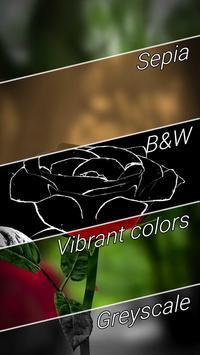 3D Rose Live Wallpaper Free imagem de tela 3