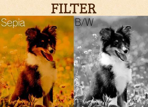 Wallpaper Dog Collection screenshot 3