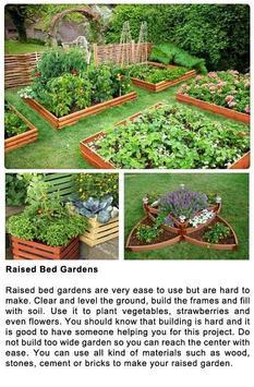 DIY Gardening Tips screenshot 5