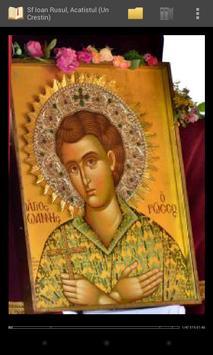 Biblioteca Ortodoxa - Acatiste Biblia Rugaciuni ảnh chụp màn hình 1