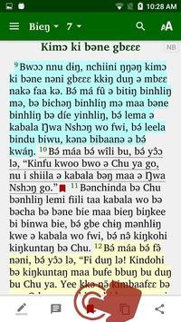Naami Bible screenshot 2
