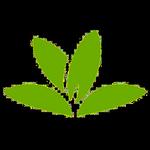 PlantNet Identification Plante APK