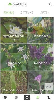 Pl@ntNet Pflanzenbestimmung Screenshot 4