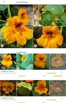 Pl@ntNet Pflanzenbestimmung Screenshot 7