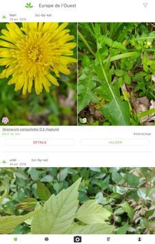 PlantNet capture d'écran 6