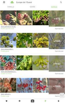PlantNet capture d'écran 9