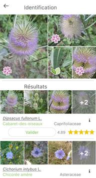 PlantNet capture d'écran 1
