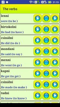 Learn Hungarian language screenshot 7