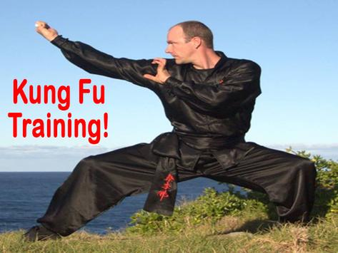 Learn Kung Fu screenshot 3