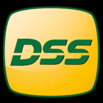 DSS screenshot 1