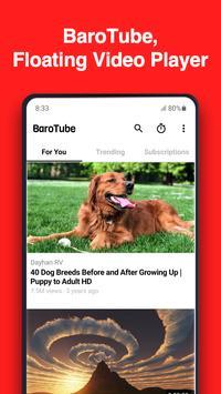 Poster BaroTube, Floating Video Player