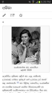 SETT Sinhala Tamil web browser screenshot 4