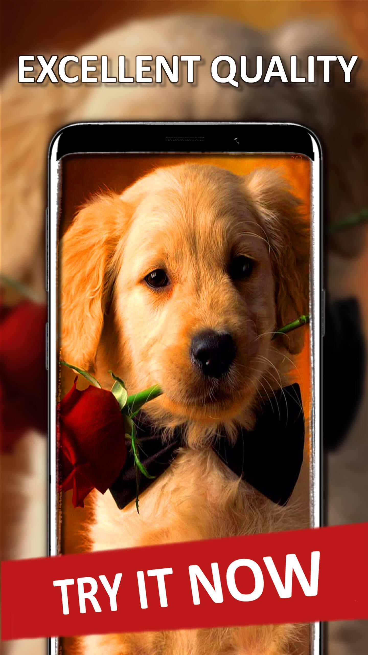 Wallpaper Anak Anjing For Android APK Download