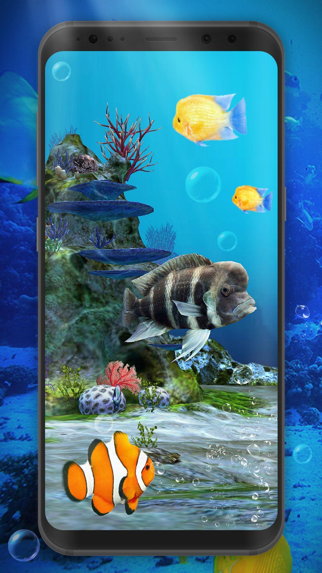 Aquarium Clown Fish Live Wallpaper 2019 For Android Apk