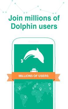 Dolphin Affiche