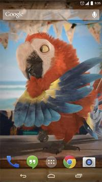 Macaw Parrot Live Wallpaper for Android - APK Download