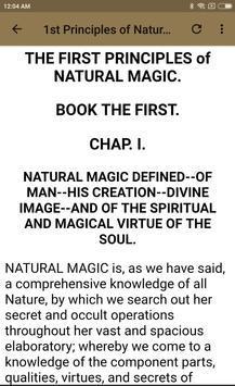 MAGUS - BOOK 1 screenshot 17
