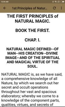 MAGUS - BOOK 1 screenshot 3