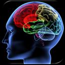 Shuffle 'n Slide Brain Game aplikacja