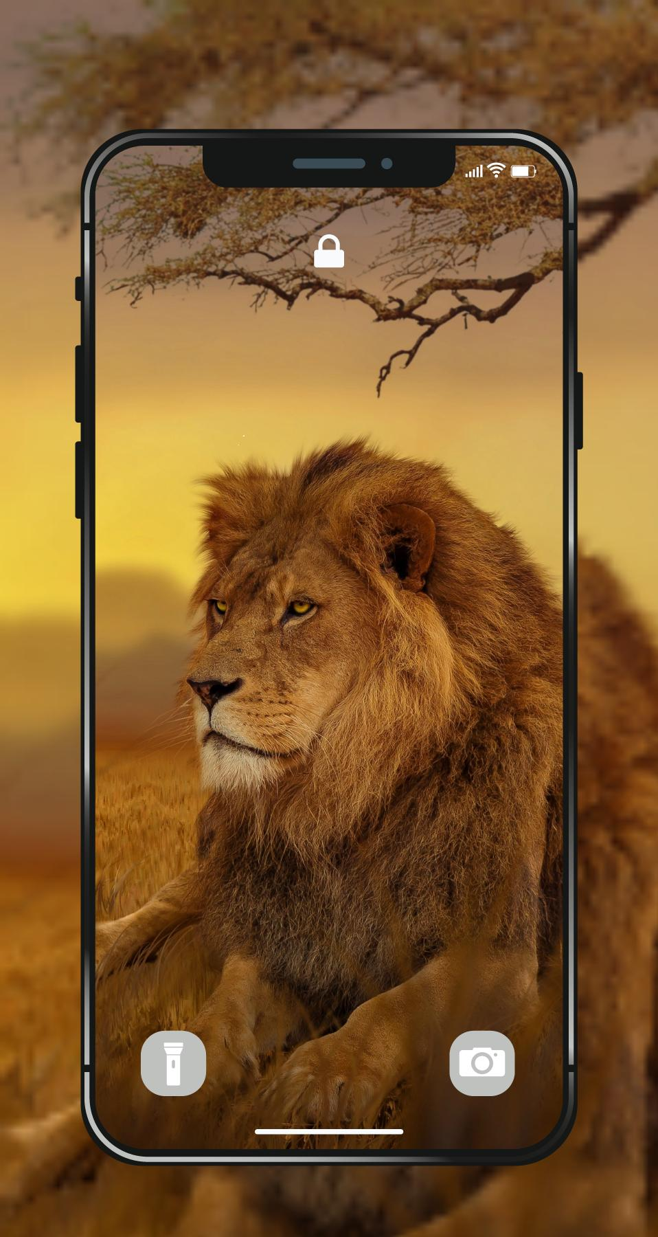 Lion Wallpapers Angry 4k Hd Lion Pictures For Android Apk Download