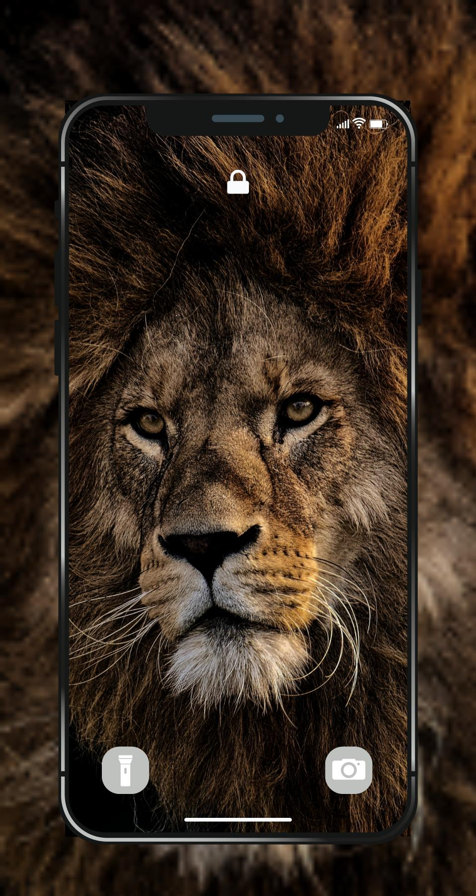 Lion Wallpapers Angry 4k Hd Lion Pictures For